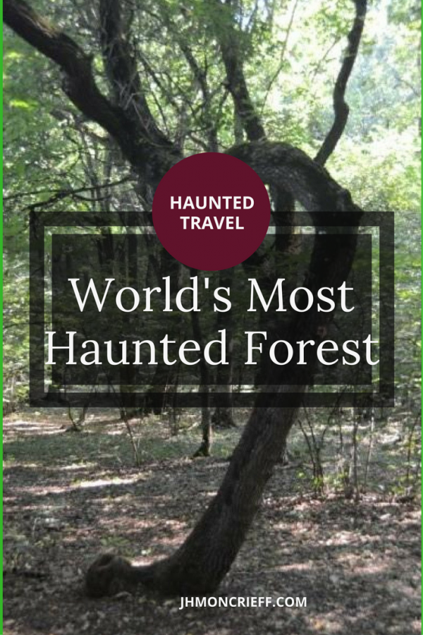 Exploring Hoia Baciu, the world's most haunted forest