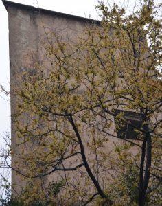 Haunted Shanghai: Abandoned hotel