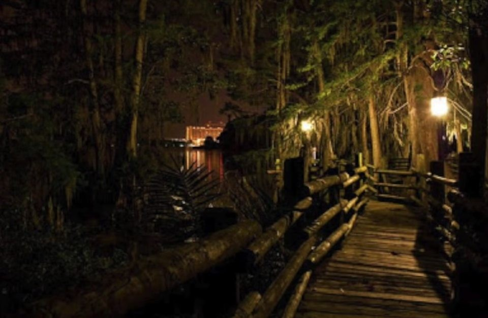 Discovery Island by The Sun